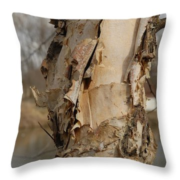 Throw Pillow featuring the photograph Birch Tree By The River by Lena Wilhite