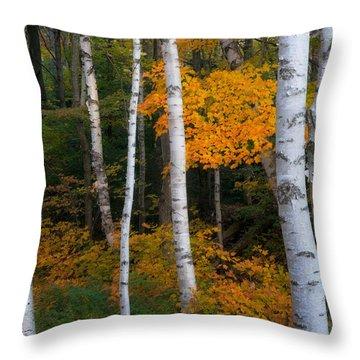 Birch Tree Pan Throw Pillow