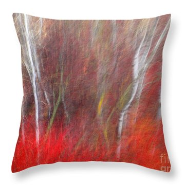 Birch Trees Abstract Throw Pillow by Tara Turner