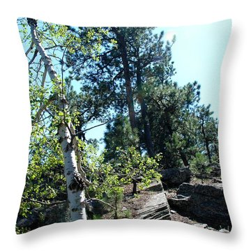 Birch Trees Throw Pillow by Dany Lison