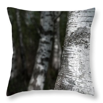 birches II Throw Pillow by Hannes Cmarits