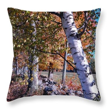 Throw Pillow featuring the photograph Birches by Mim White