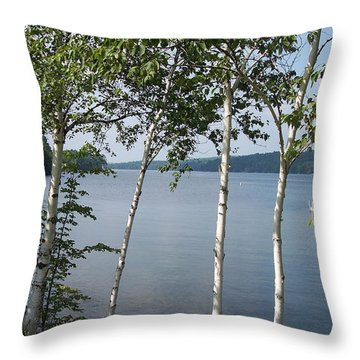 Birches On Sunapee Throw Pillow