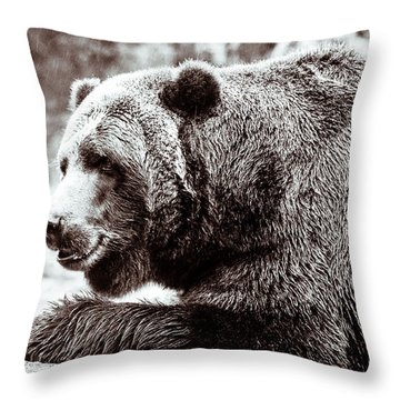Bird And A Bear In Black And White Throw Pillow by Wade Brooks