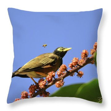 Bird And Bee Throw Pillow by Suzette Kallen
