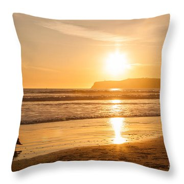 Bird And His Sunset Throw Pillow