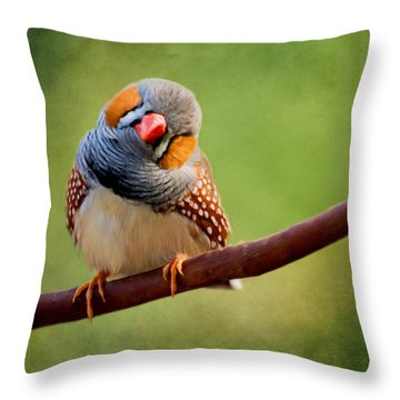 Bird Art - Change Your Opinions Throw Pillow