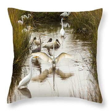 Bird Brunch 2 Throw Pillow