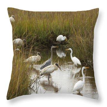Bird Brunch Throw Pillow by Patricia Schaefer