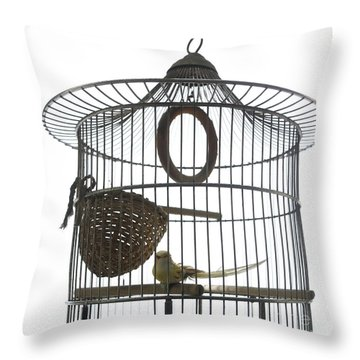Bird Cage Throw Pillow by Bernard Jaubert