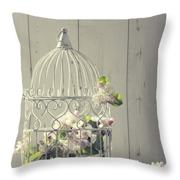 Bird Cage Throw Pillow by Amanda Elwell