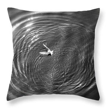 Bird Chasing Bait Throw Pillow