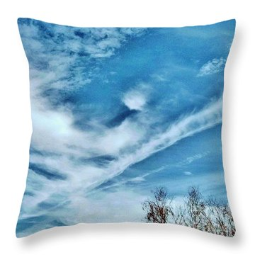 Bird Cloud Soaring By Throw Pillow