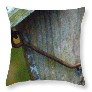 Throw Pillow featuring the photograph Bird Feeder Locked Memory by Brenda Brown