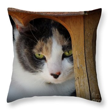Bird Feeder Throw Pillow