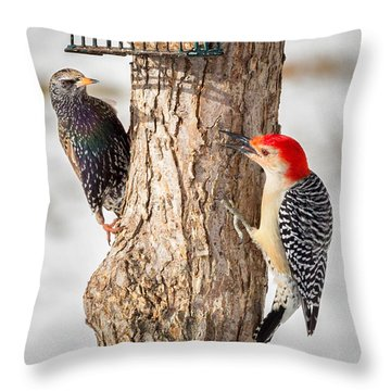Bird Feeder Stand Off Square Throw Pillow by Bill Wakeley