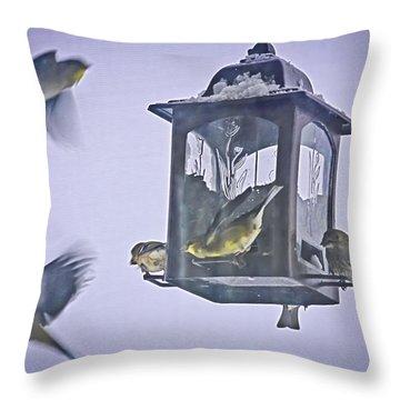 Bird Feeding Frenzy Throw Pillow
