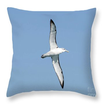 Arbornos Flying In New Zealand Throw Pillow