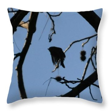Throw Pillow featuring the photograph Bird In Flight by Tara Potts