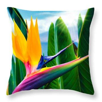 Bird Of Paradise 5 Throw Pillow