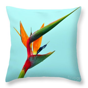 Bird Of Paradise Against Aqua Sky Throw Pillow