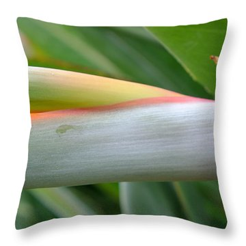 Bird Of Paradise Bud Throw Pillow