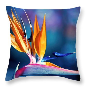Throw Pillow featuring the photograph Bird Of Paradise by Gunter Nezhoda