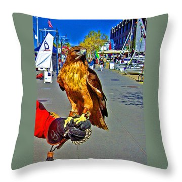 Bird Of Prey At Boat Show 2013 Throw Pillow by Joseph Coulombe