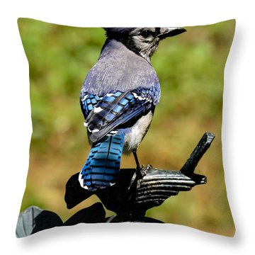 Bird On A Bird Throw Pillow