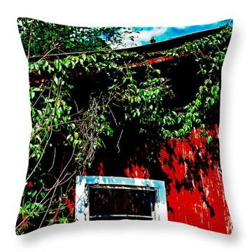 Throw Pillow featuring the photograph Bird On Roof by Maggy Marsh
