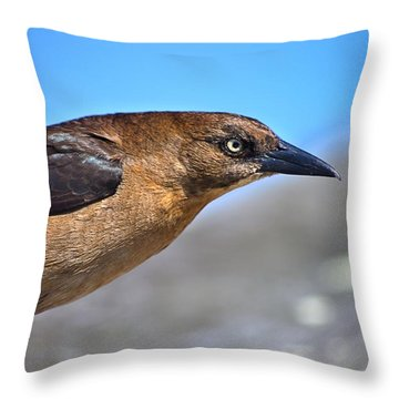 Bird On The Kure Beach Pier Throw Pillow