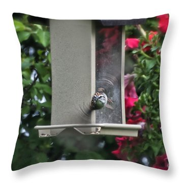Throw Pillow featuring the photograph Bird Time To Fly by Thomas Woolworth