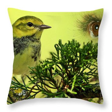 Bird Watching Throw Pillow by Inspired Nature Photography Fine Art Photography