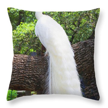 Bird - White Peacock Pose- Luther Fine Art Throw Pillow by Luther Fine Art
