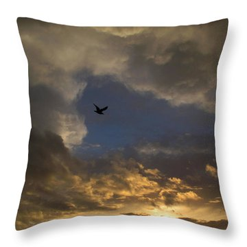 Throw Pillow featuring the photograph Birdie Or Hole In One by Suzy Piatt