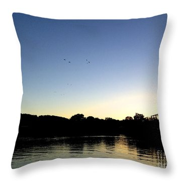 Birds And Blues Throw Pillow