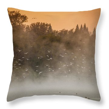 Birds And The Fog  Throw Pillow