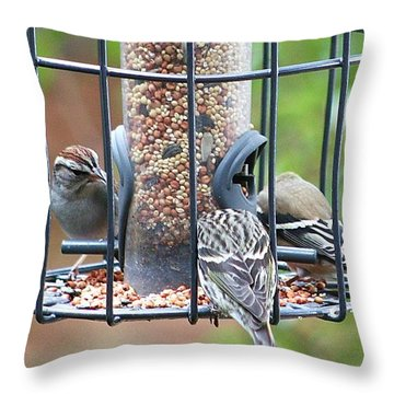 Birds At Lunch Throw Pillow by Ellen O'Reilly