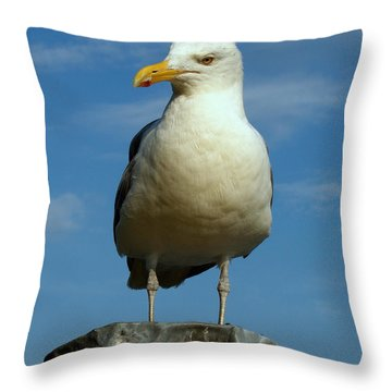 Throw Pillow featuring the photograph Bird's Eye View by Caroline Stella
