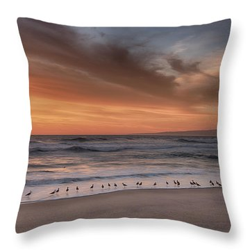 Birds In The Surf Throw Pillow