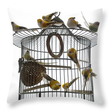 Birds Inside And Outside A Cage Throw Pillow by Bernard Jaubert