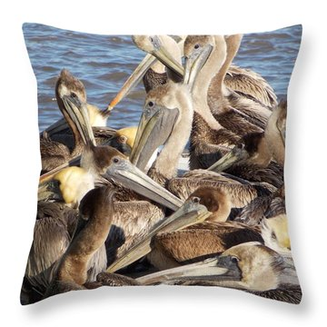 Throw Pillow featuring the photograph Birds Of A Feather by John Glass