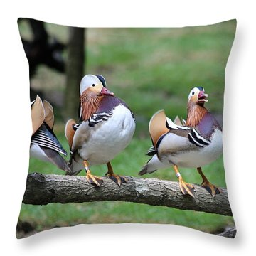Birds Of A Feather Throw Pillow by Marty Fancy