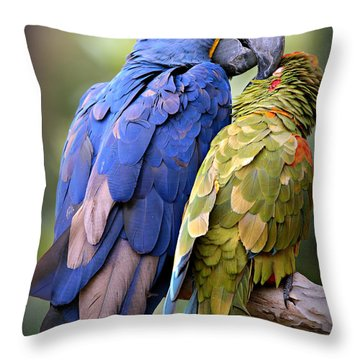 Birds Of A Feather Throw Pillow by Stephen Stookey