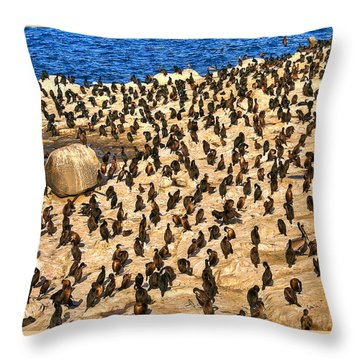 Throw Pillow featuring the photograph Birds Of A Feather Stick Together by Jim Carrell
