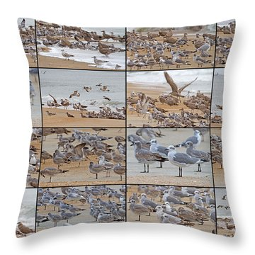Birds Of Many Feathers Throw Pillow by Betsy Knapp