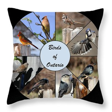 Birds Of Ontario Throw Pillow by Davandra Cribbie