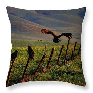 Birds On A Fence Throw Pillow by Matt Harang