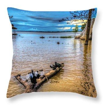 Birds On Log Throw Pillow