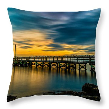 Birds On The Dock Throw Pillow
